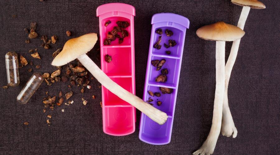 Microdosing Magic Mushrooms: The Next Mental Health Breakthrough